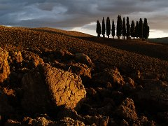 Orcia_001