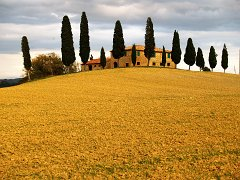 Orcia_010